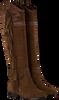 Bruine ASH Lange laarzen JEZABEL  - small