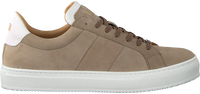 Taupe VERTON Sneakers 8448  - medium
