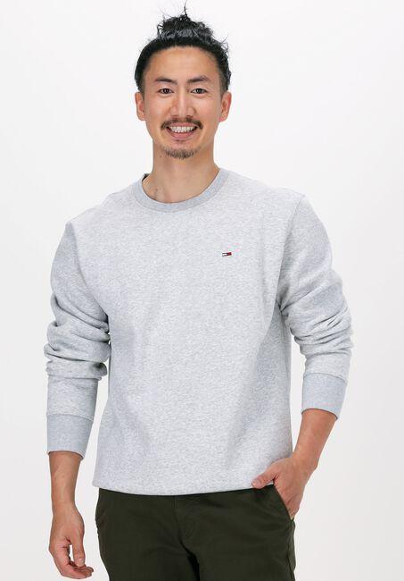 Lichtgrijze TOMMY JEANS Sweater TJM REGULAR FLEECE C NECK  - large