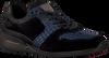 Blauwe FLORIS VAN BOMMEL Sneakers 16213  - small