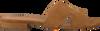 Cognac NOTRE-V Slippers 2213  - small