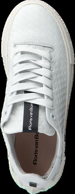 Witte FLORIS VAN BOMMEL Sneakers FLORIS VAN BOMMEL 85234 - large