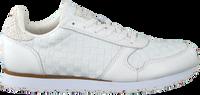 Witte WODEN Lage sneakers YDUN NSC  - medium