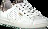 Witte VINGINO Sneakers TORNEO  - small