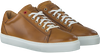 GREVE SNEAKERS 6185 - small