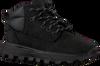 Zwarte TIMBERLAND Hoge Sneaker TREELINE MID JET  - small