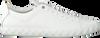 EMPORIO ARMANI SNEAKERS X4X211 - small