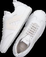 Witte COPENHAGEN STUDIOS Lage sneakers CPH413  - medium