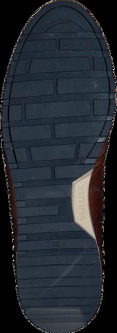 Cognac VAN LIER Sneakers 1955702  - large
