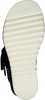 Zwarte LAURA BELLARIVA Sandalen 3381  - small