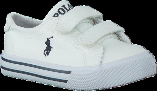 Witte POLO RALPH LAUREN Sneakers SLATER  - large