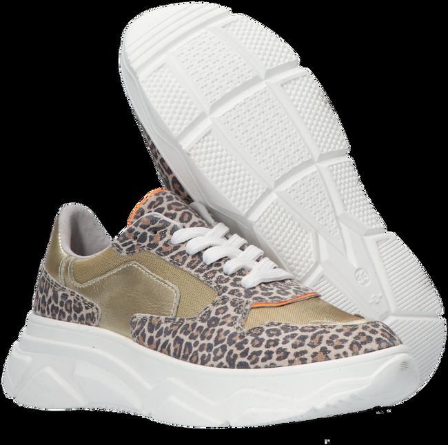 Beige OMODA Lage sneakers O1266-212  - large