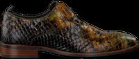 Groene REHAB Nette schoenen FALCO SNAKE  - medium