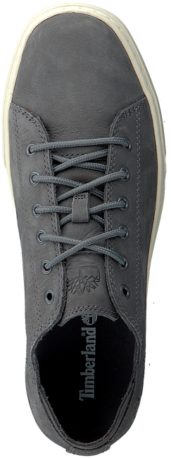 Grijze TIMBERLAND Sneakers ADV 2.0 CUPSOLE MODERN OX - large