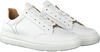 Witte MAZZELTOV Lage sneakers 20-11048  - small