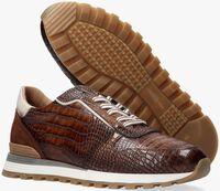 Bruine GIORGIO Lage sneakers 87520  - medium