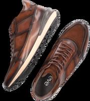 Cognac GREVE Hoge sneaker PODIUM 7540  - medium