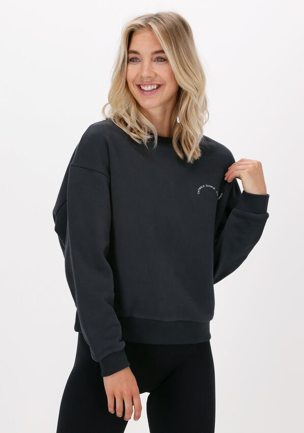Grijze CATWALK JUNKIE Sweater SW BE GOOD DO GOOD - larger