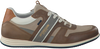 Taupe MCGREGOR Sneakers JAIRISON  - small
