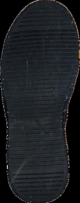Blauwe BRAQEEZ Sneakers TIM TERRA - large