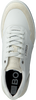 Witte BJORN BORG Lage sneakers T1350 BSC M  - small