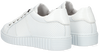 Witte BULLBOXER Lage sneakers AIB006E5L  - small