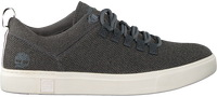 Blauwe TIMBERLAND Lage sneakers AMHERST ALPINE KNIT - medium