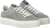 Grijze MARUTI Lage sneakers TED  - small