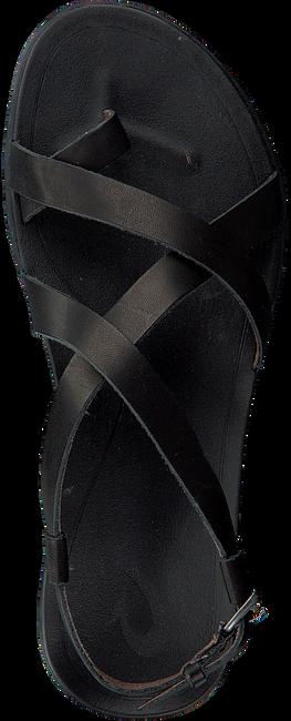 Zwarte OLUKAI Sandalen UPENA  - large