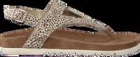 Beige MARUTI Sandalen BEAR - medium
