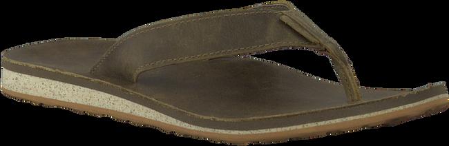 Bruine TEVA Slippers CLASSIC FLIP  - large