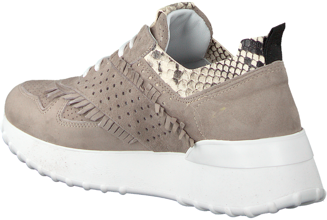 Taupe NOTRE-V Sneakers AG283  - large