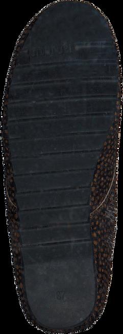 Bruine MARUTI Veterschoenen GINNY  - large
