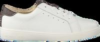 Witte MICHAEL KORS Sneakers ZIVYALIS  - medium