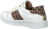Witte BULLBOXER Sneakers AIB006ESL - small