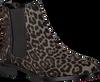 Grijze MARUTI Chelsea boots PASSOA - small