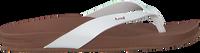 Witte REEF Slippers CUSHION COURT - medium