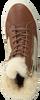 Bruine GANT Sneakers OLIVIA - small