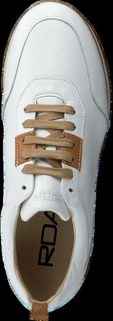 Witte ROBERTO D'ANGELO Lage sneakers MOTO  - large