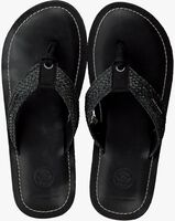 Zwarte SCOTCH & SODA Slippers CADELLI  - medium