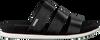 Zwarte CALVIN KLEIN Slippers DALANA - small