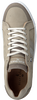 Taupe SCAPA Sneakers 10/4513CN  - small