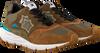 Bruine ATLANTIC STARS Sneakers POLARIS  - small