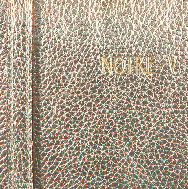 Gouden NOTRE-V Schoudertas BELLE  - large