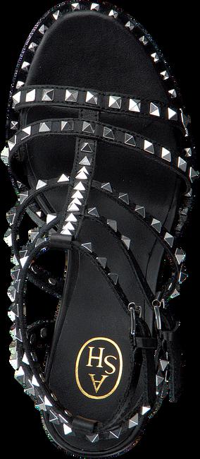 Zwarte ASH Sandalen LUCY - large