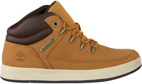 Camel TIMBERLAND Sneakers DAVIS SQUARE EUROSPRINT KIDS  - medium