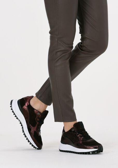 Bruine FLORIS VAN BOMMEL Lage sneakers 85343  - large