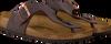 Bruine BIRKENSTOCK PAPILLIO Slippers RAMSES  - small