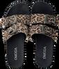 Beige OMODA Slippers LPARANSTUD-07WB - small