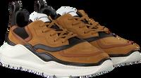 Cognac BARRACUDA Sneakers BU3242  - medium
